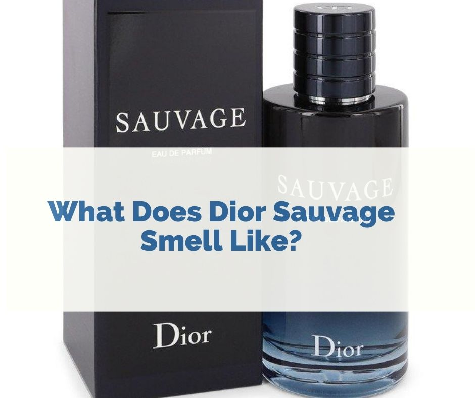 what does Sauvage smell like